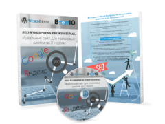 Seo wordpress professional