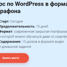 Курс по WordPress в формате онлайн-марафона